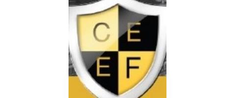 CeeF beveiliging Hengelo